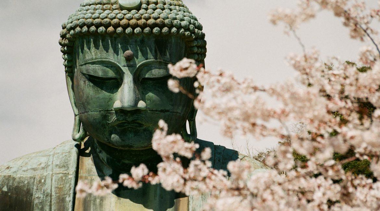 Méditer… oui, mais pourquoi?
